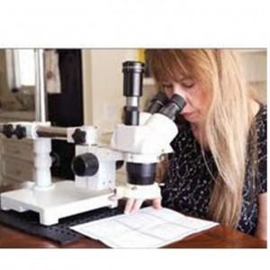 sl microscope
